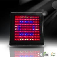 China IP20 150W AC 90 - 240V LED Plant Growing Lamp Lights With 38 Degree, 50000 hs on sale