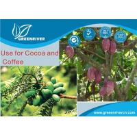 China Mixture Metalaxyl 12% + Copper Oxide 60% WP Organic Fungicide Cocoa Tree and Coffee Tree on sale