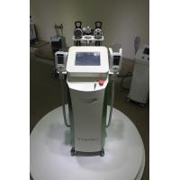 5 handles Fat Reduction Cryotherapy Body/Cryolipolysis Slimming Machine