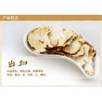 Best Angelica sinensis( whole ,cut and extract powder) wholesale