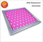 Best 110V Led Full Spectrum Grow Lights , Led Flowering Grow Lights Energy Saving wholesale