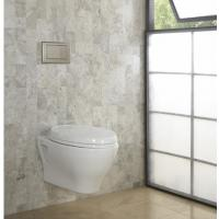 Cheap For modern bathrooms Timeless style Concealed cistern SoftMood Wall Hung WC With for sale