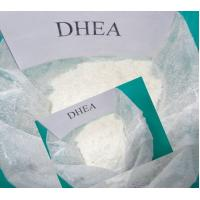 Quality Powerful Sex Hormones DHEA Didehydroepiandrosterone For Male And Female wholesale