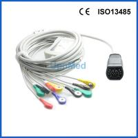 Best ZOLL 10 lead patient ekg cable; Reusable EKG Cable with leadwires wholesale