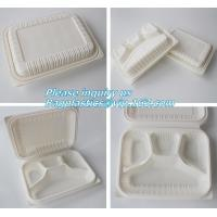 Best blister packaging Packaging Tray, airline fast food trays with handle, cornstarch food trays wholesale