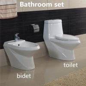 Best Hot sale Elegent Sanitary Ware Ceramic Bathroom Sets Washdown One piece Toilet with Bidet wholesale