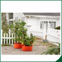 Best Weatherproof Organic Grow Bags , Tomato Planter Bag With Multi Function wholesale