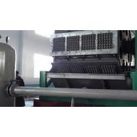 Best PLC Touch Screen Control Paper Egg Tray Machine , Egg Crate Making Machine wholesale