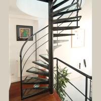 Cheap Customized Spiral Stairs Railing Balustrade Spiral Staircase with Glass Steps for sale