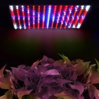 Best 225 Full Spectrum LED Grow Lights 14 Watt For Vegetable , Eco Friendly wholesale