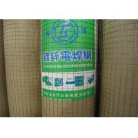 "Best Galvanized Welded Wire Mesh With 1/4"" 1/2"" 3/4"" 1"" 2"" 5/8"" 3/8"" Hole wholesale"
