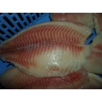 Best Thailand Origin Fresh Frozen Seafood / Bulk Frozen Fish Tilapia Fillet wholesale