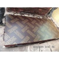 Best 18mm birch film faced plywood with MELAMINE glue  wholesale