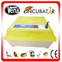 Best Best price mini incubator/mini egg incubator/small incubator wholesale