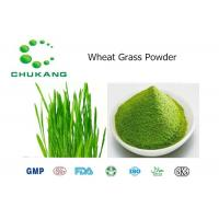 Best Wheat Grass Powdered Herbal Extracts Triticum Aestivum L Natural Ingredients wholesale