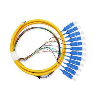 Best 12 Core Fiber Optic Patch Cord Pigtail Sc Connector For Telecommunication Equipment wholesale