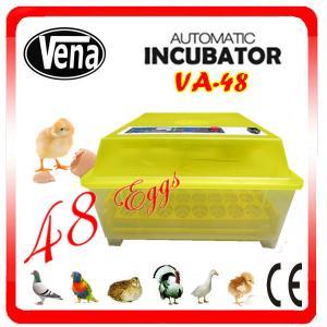 Best Chicken egg incubator / mini incubator / va-48 egg incubator wholesale