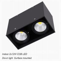 Best Interior IP40 contemporary 24W COB LED downlight for home shopping mall wholesale