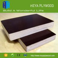 Best Wholesale 8-18mm waterproof film faced plywood board China Supplier wholesale