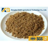 Best GMP Pure Natural Fish Meal Powder / Animal Feed Additives 65% Protein Content wholesale