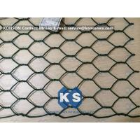 Best Professional PVC Gabions Wire Mesh Box and Basket for Chicken Hexagonal Wire Netting wholesale