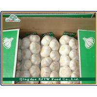 Buy cheap Wholesale Garlic Price In China from wholesalers