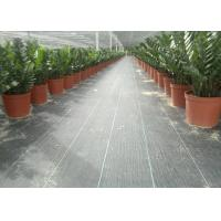 Best Geosynthetic Fabric PP 130g Black Color 1m Width Weed Barrier For Anti Grass wholesale