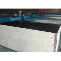 Best black film faced plywood with MR/MELAMINE/WBP glue wholesale