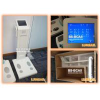 China Professional body fat analyzer composite/body fat and muscle analyzer with bioimpedance on sale