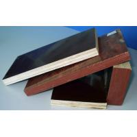 Best  plywood manufacture wholesale
