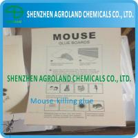 Best Paper Board Mouse Glue Boards Bio Degradable With Transparent Thick Liquid wholesale