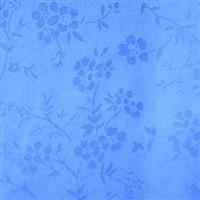 China Nylon Dobby, Jacquard Fabric on sale