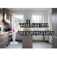 China Most Powerful 10 In 1 Steam Mop X 10 , Multi Function Steam Mop With Attachments on sale