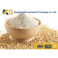 Best Moisture 10% Dried Brown Rice Powder No Foreign Objects Neutral Odor And Flavor wholesale