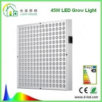 Cheap Surface Mounted LED Panel Grow Light With 50~60Hz Frequency , 50000 Hour Life for sale