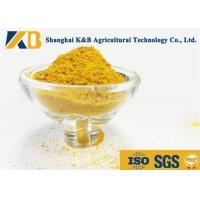 Best Light Yellow Powder Corn Gluten Meal Make Animals More Healthy And Stronger wholesale