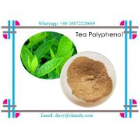 Best Brown Yellow Natural Vitamin Powder Natural Tea Polyphenols 99.9% for Health Products CAS 84650-60-2 wholesale