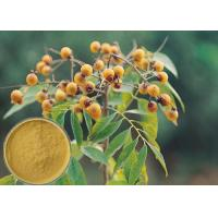 Best Yellow Brown Powder Soapberry Extract Cosmetic Grade For Bath Cream / Shampoo wholesale