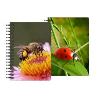 Cheap 0.6mm PET Material 3D Lenticular Notebook For Office Stationery for sale