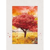 Cheap Four Season Tree 5d Lenticular Pictures 0.6mm Pet 30*40cm Painting Poster for sale
