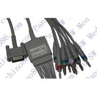 Best HP one piece 10-lead ECG cable with leadwire wholesale