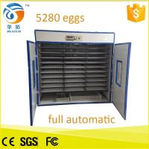 Best Fully automatic egg incubator hatchery 5280 capacity chicken egg incubator hatching machine egg incubator wholesale