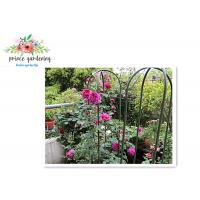 Best Nursery House Garden Stake Solid Frame Flower Support Ushape Pipe wholesale