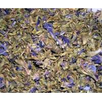Best Dried pueraria flower of Pueraria lobata organic and new dried bulk supply wholesale