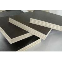 high quality phenolic film faced plywood for construction