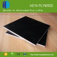 Best Phenolic film faced concrete form shuttering plywood China factory wholesale