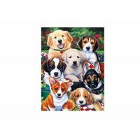 Best Dogs Animal 3D Lenticular Poster For Hotel Decoration With 40x40cm Size wholesale