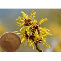 Best Hamamelis Virginiana Extract Cosmetic Raw Materials For Moisturize / Skin Whitening wholesale
