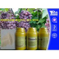 Best Garden Safe Apple Tree Fungicide Kresoxim - Methyl 25% Wdg 143390-89-0 wholesale