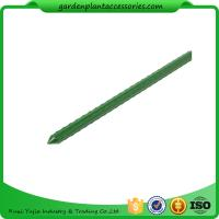 Best Green Steel Garden Stakes PE Plastic Coated 8mm Diameter , 60cm Length  Plant support Steel with plastic coated wholesale